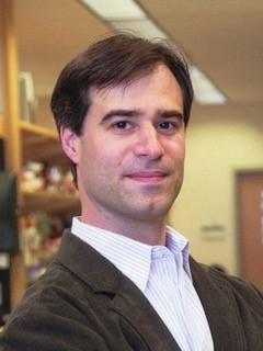 Matthew parkinson phd thesis